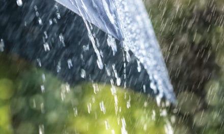 5 Alternativas para los Días de Lluvia