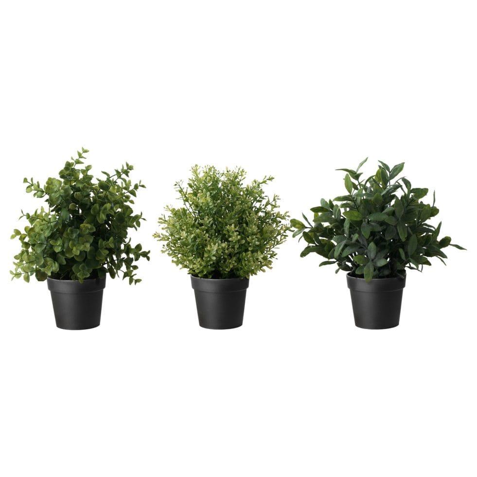 Plants_IKEAPR