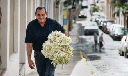 Dónde Conseguir las Mejores Flores