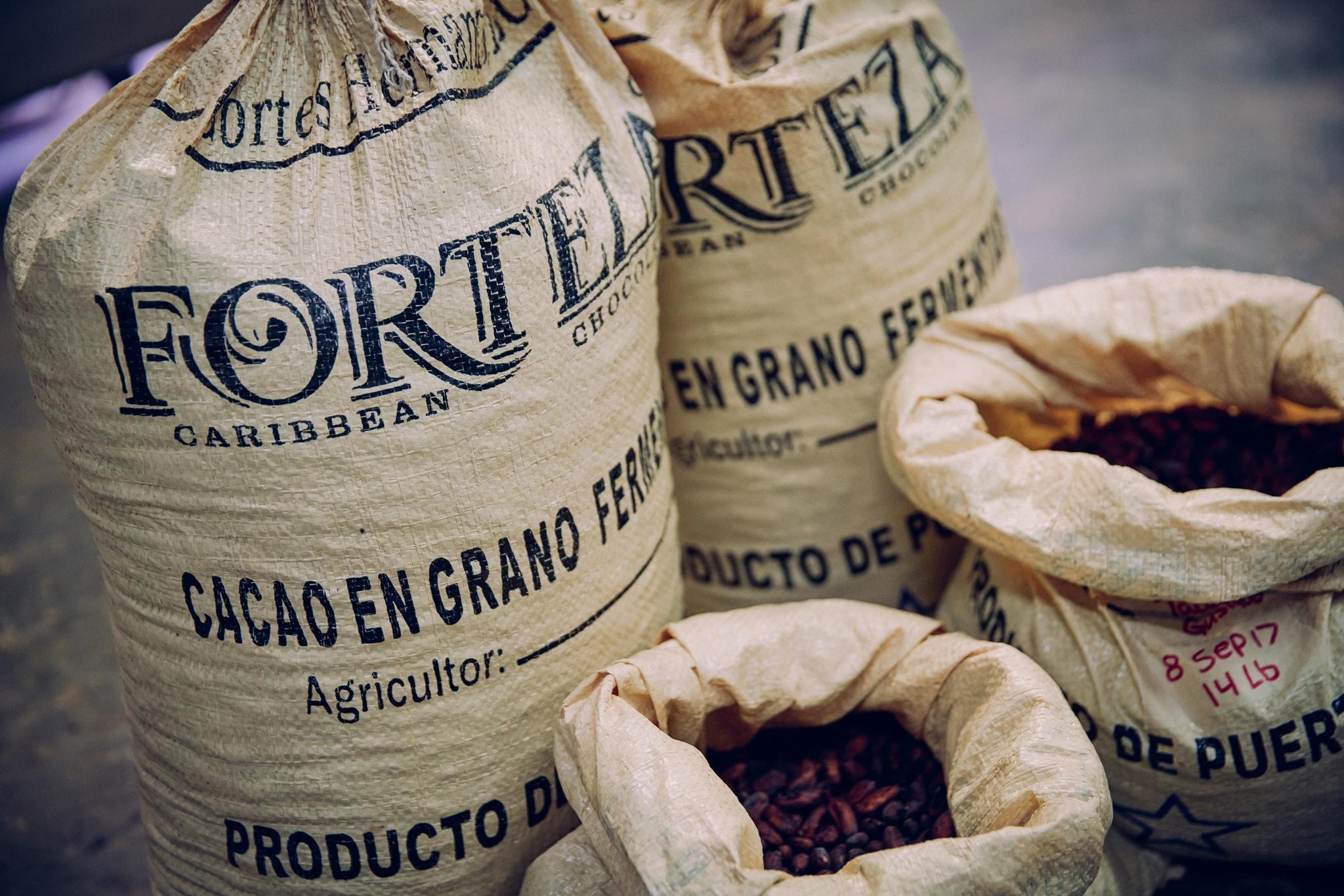 4 hechos de la industria del cacao en Puerto Rico que deberías saber