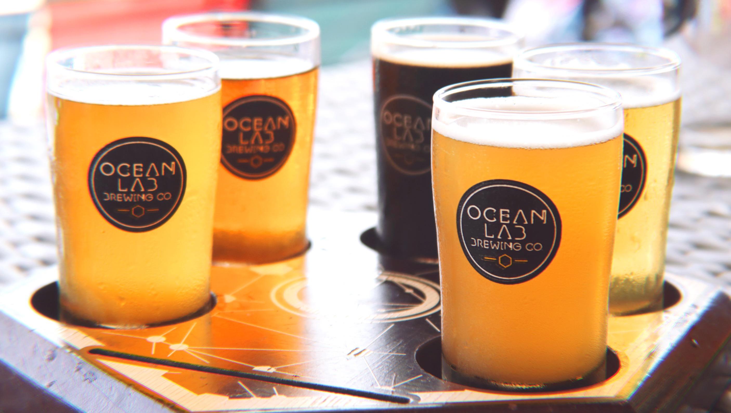Merodeando en OceanLab para una lección de beers